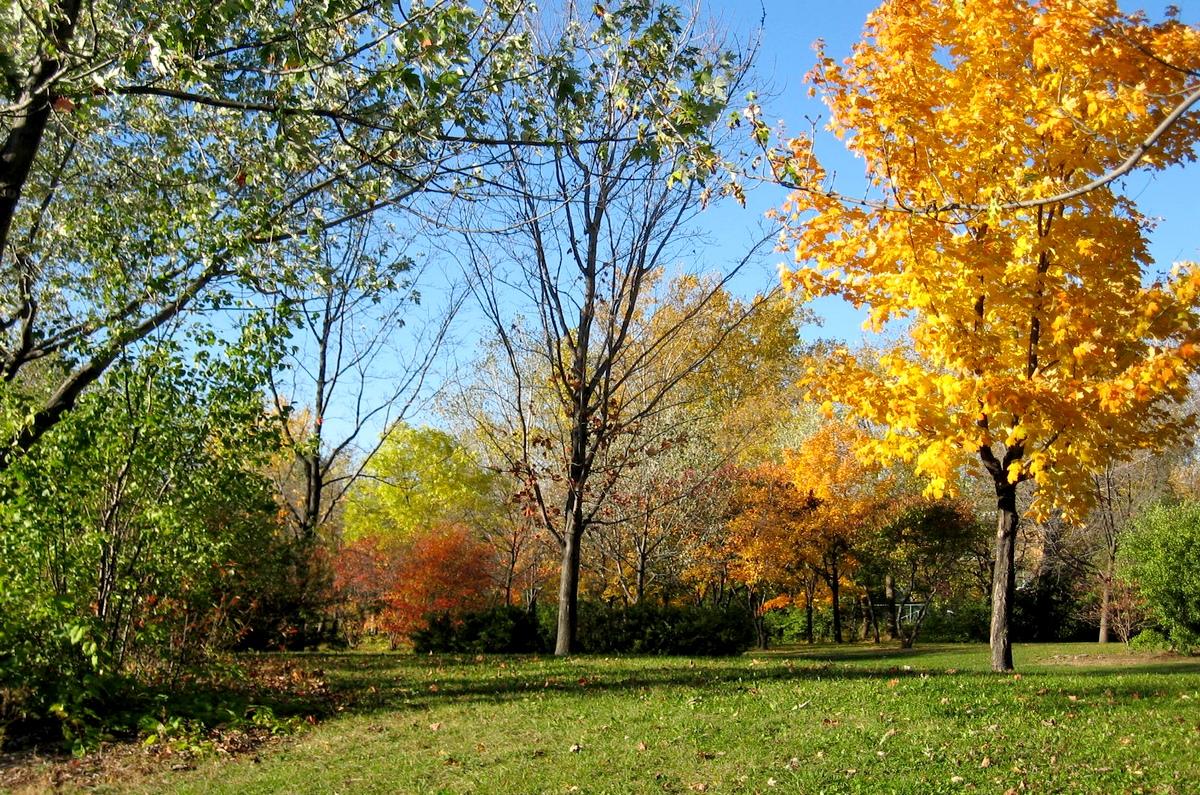 Gisoft free photos photos paysage d 39 automne gratuites - Images d automne gratuites ...